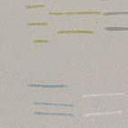 Wallpaper no 411