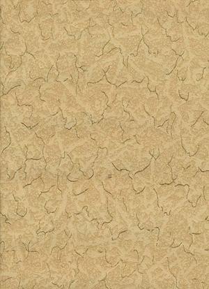 Wallpaper no 3010